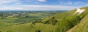 Removals Wiltshire