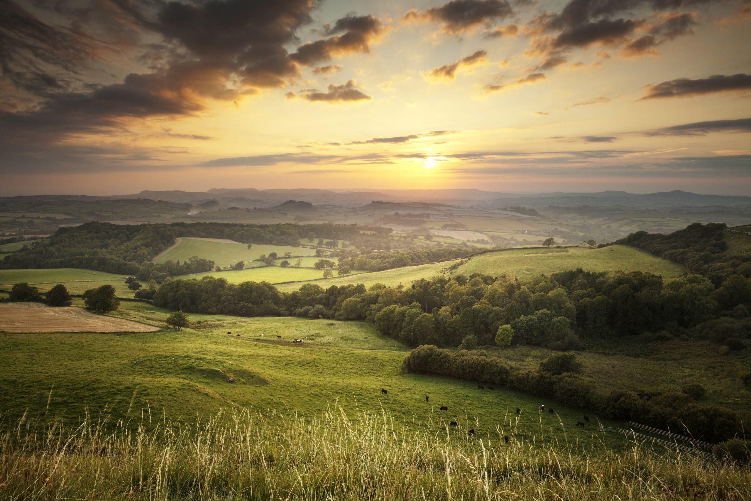 Top Five Tips when Relocating in Dorset